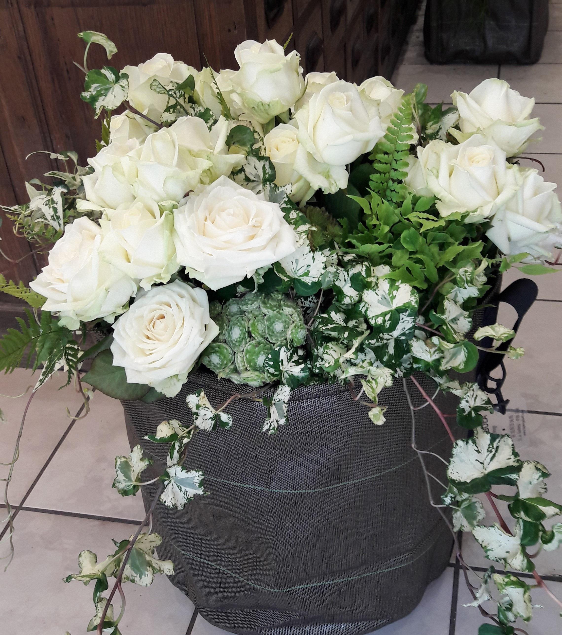 La pergola roses blanches