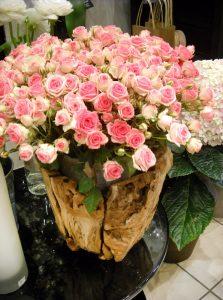 La pergola roses blanches roses