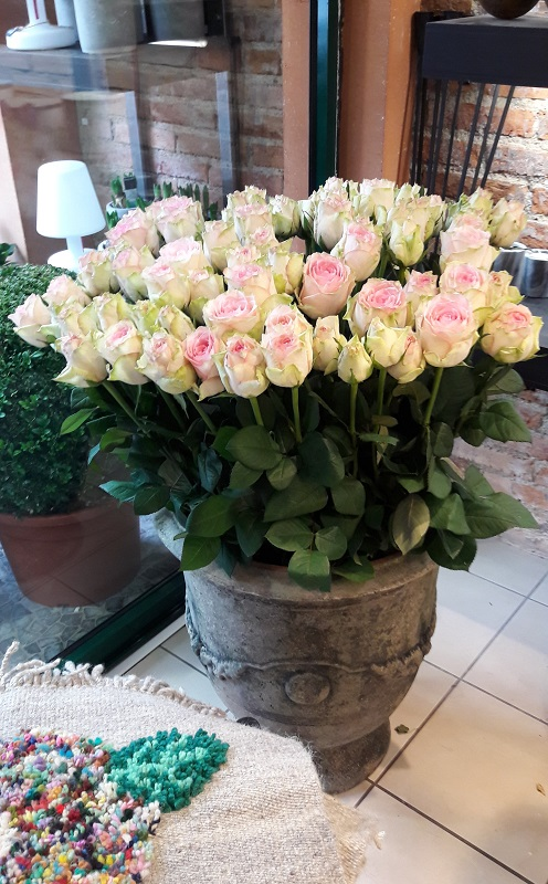 Rose Espérance poterie dAnduze
