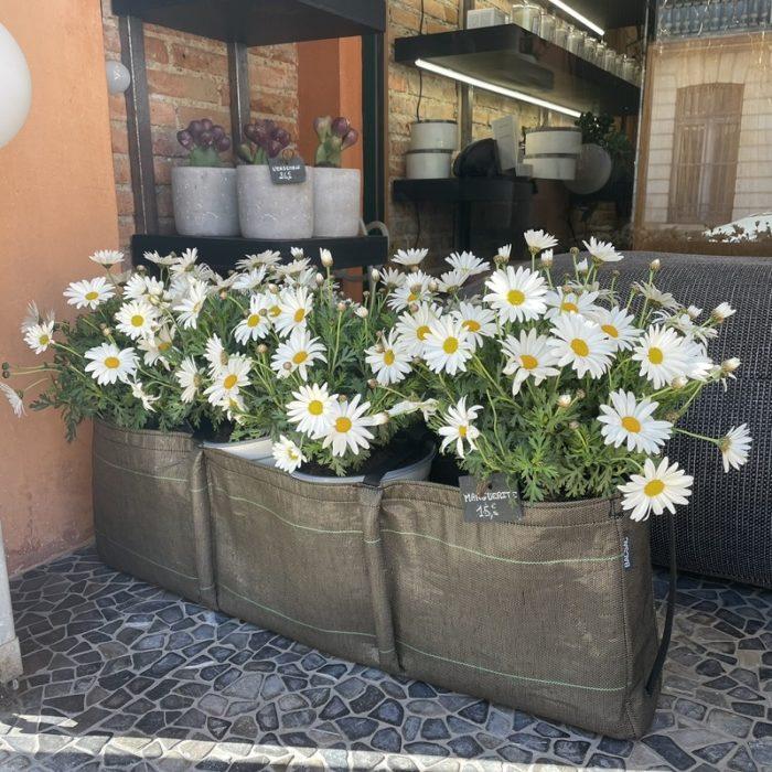 Jardiniere Bacsac