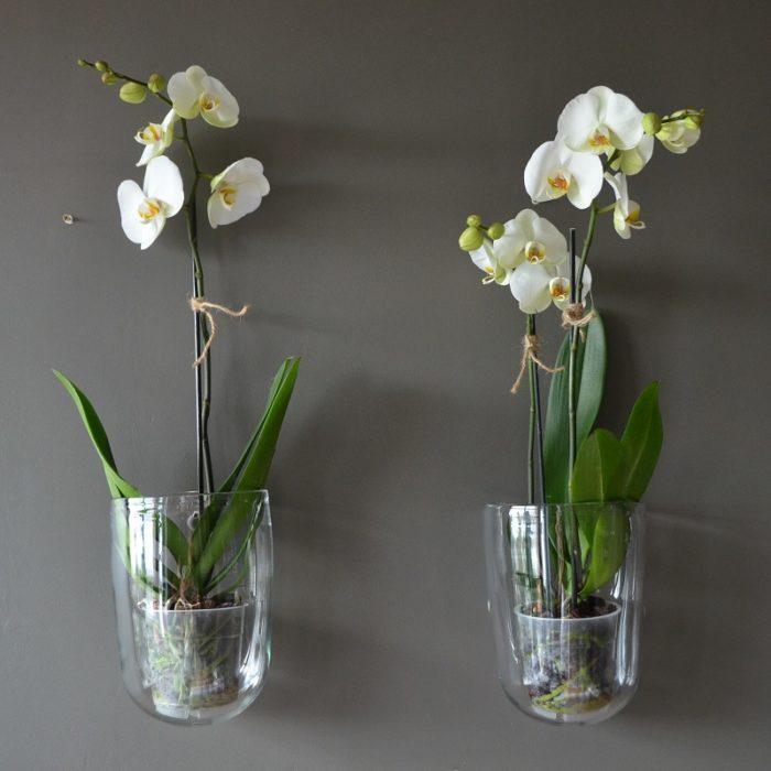 Vases muraux artisanaux
